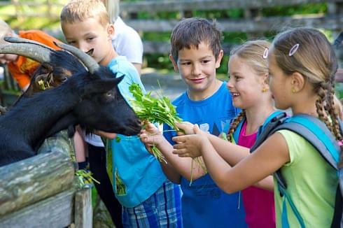 Sommerliches Kinderprogramm in den Kitzbüheler Alpen